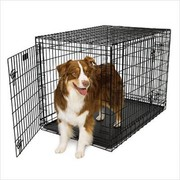 Your Search for Top-Quality Pet Kennels Ends at Hanley's Home & Garden