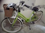 Ladies 5 Speed BSP XRay Bicycle for Sale