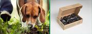 Buy Compostable & Biodegradable Dog Waste Bags in Bulk - BioBag